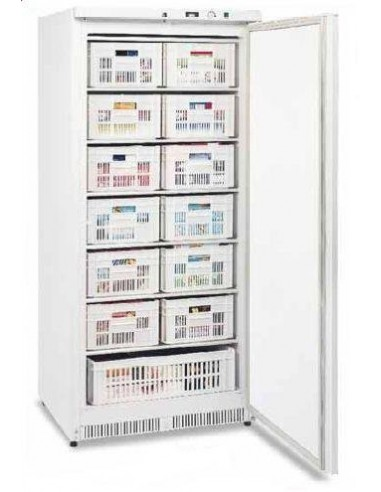 Congélateur armoire 500L